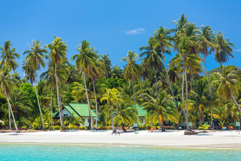 Spiaggia tropicale con palme da cocco a Koh Kood